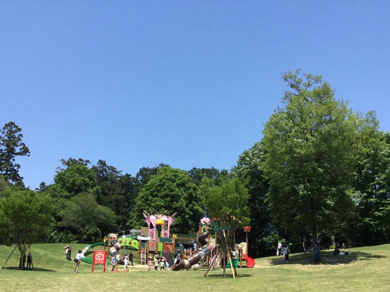 東松山ぼたん園大型複合遊具