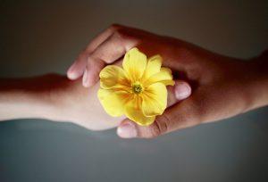 黄色い花を握る親子の手